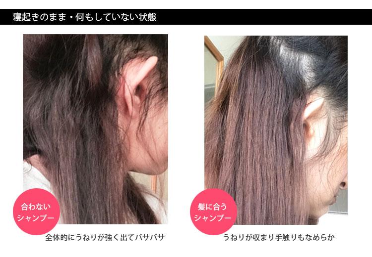 くせ毛シャンプー比較・アイロン前の画像