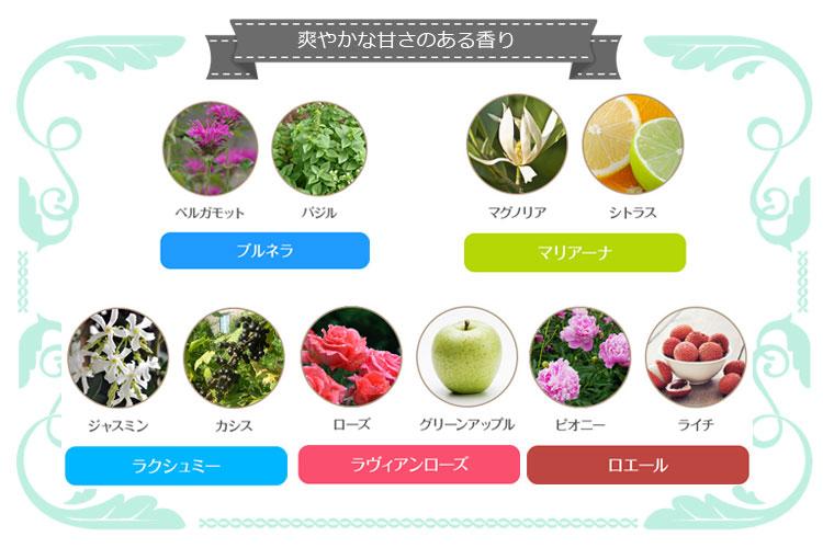 アンククロス シャンプー・香り分類表の画像2