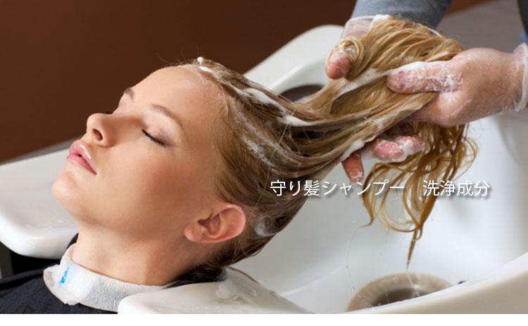 守り髪シャンプー・洗浄成分