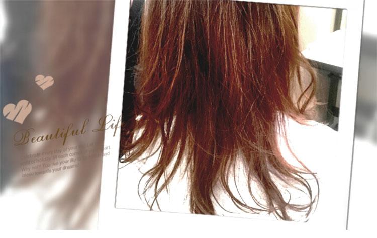 シャギーガットの見本画像