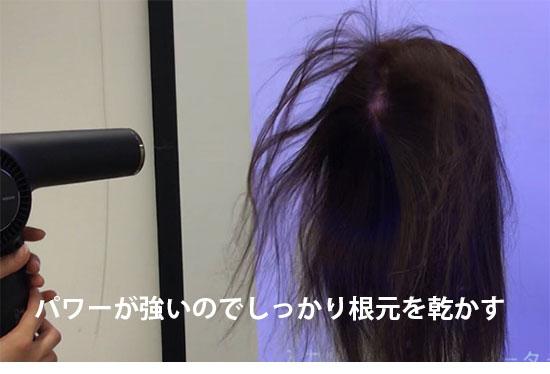 Nobby by TESCOM(ノビーバイテスコム)NIB3000・風が根元に届く様子