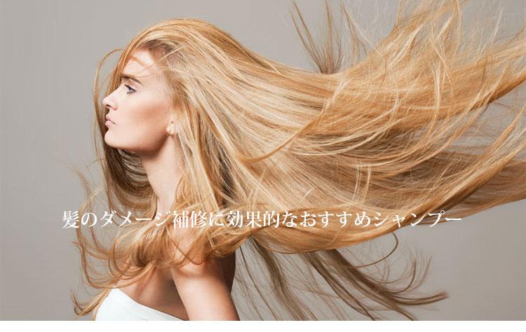 髪のダメージ補修におすすめのシャンプー・トップ画像