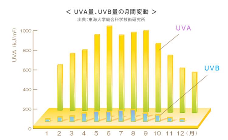 年間の紫外線量を示すグラフ