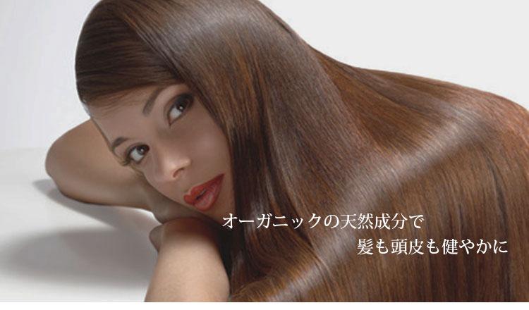 美しい髪のイメージ