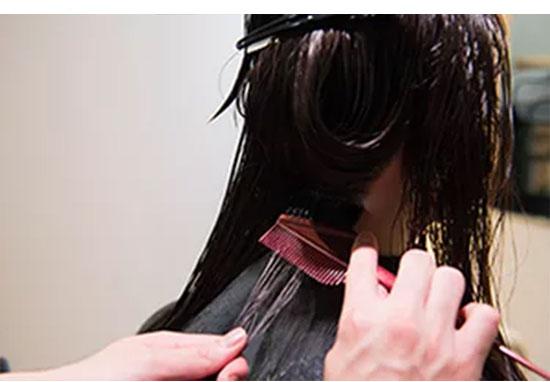 美髪プログラムの内容-2