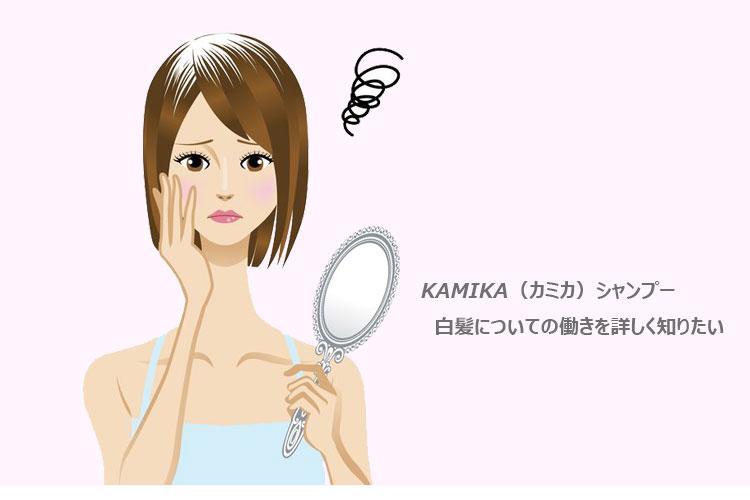 KAMIKA(カミカ)シャンプー・白髪サポート効果