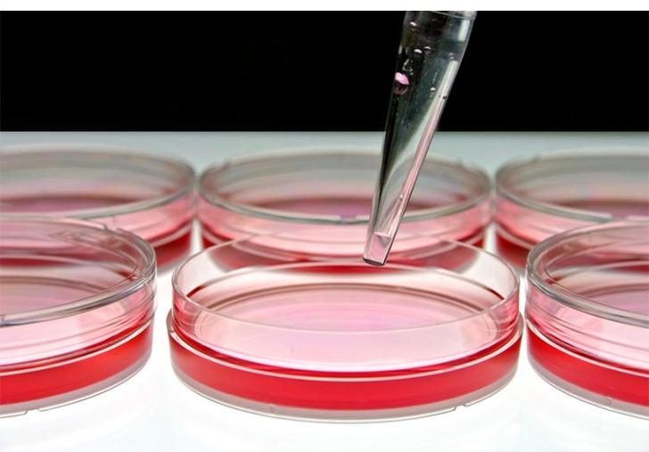 ヒト幹細胞培養液・イメージ画像