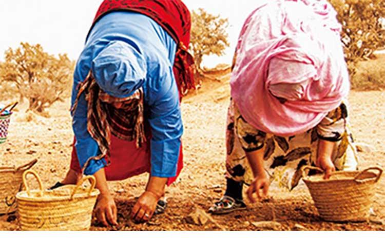 Melvita(メルヴィータ)生産者保護のイメージ画像