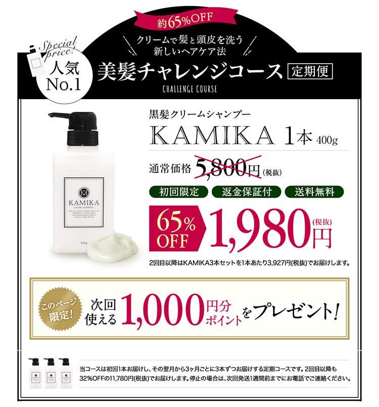 KAMIKA(カミカ)シャンプーの人気コース